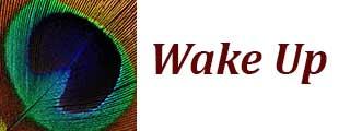 Wake Up Meditation
